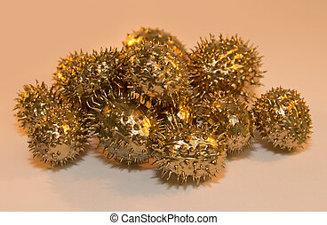 golden prickly cucumber fruits - pile of some golden prickly...