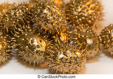 golden prickly cucumber fruits - detail of some golden...