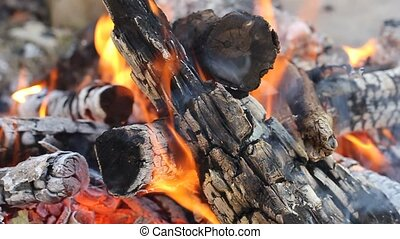 Fire flame Burning Logs