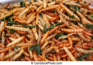 Fried insects mealworms for snack
