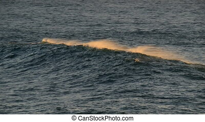beautiful wave crest at sundown