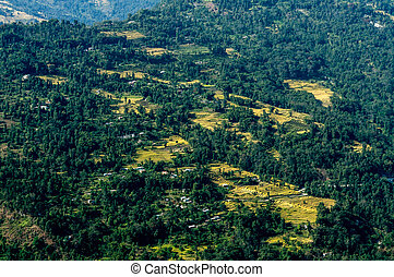 Top view of a mountain village, Sikkim - Top view of a green...