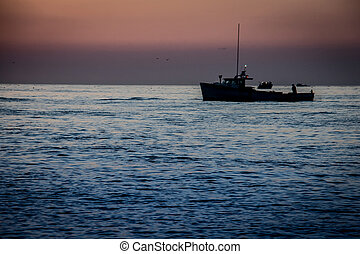 lobster fishing boat - Fishing boat off the coast of prince...