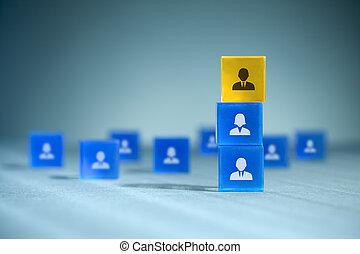 Human resources team - Human resources, team composition,...