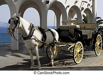 horse with carriage - horse in Spain,Nerja