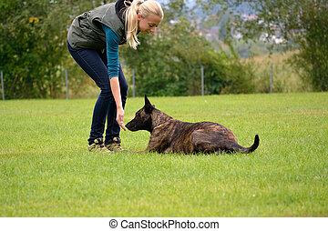 Junge Frau belohnt Hund - Hund bekommt Belohnung von...