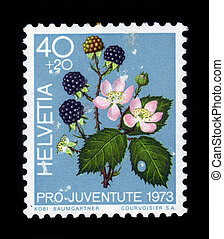 blackberry bush - SWITZERLAND - CIRCA 1973: stamp printed by...