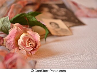 Old photos and memories of love - Old photos and dried pink...