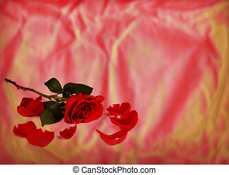 Long Stemmed Rose on Texture - Single long stemmed Red Rose...