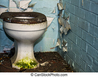 disused toilet in derelict building - an old filthy toilet...