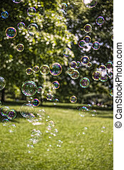 Drifting Bubbles - Bubbles floating across a park on a...