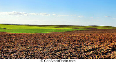 ploughed field under  cloudy sky, at sunset