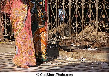 Women in colorful sari walking at Karni Mata Temple,...