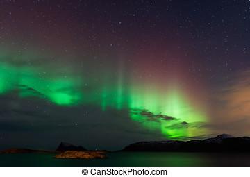 lumières, aurore, boréal, nord