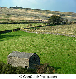 Dartmoor - The wild rural landscape of Dartmoor, England...