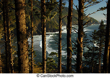 Oregon coast portrait - View of the Oregon coast seen...