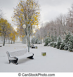 Alley in the Park later in the autumn Snow storm