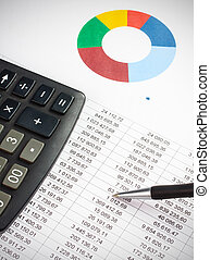 Businessman showing a diagram on a financial report using a pen