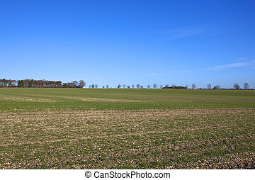 agricultural scene - an agricultural scene on the yorkshire...