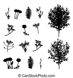 Set of Plant, Tree, Foliage Elements Silhouette Vector...