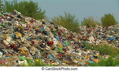Garbage dump.