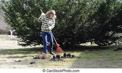 woman rake leaves - blonde woman raking leaves in the yard...