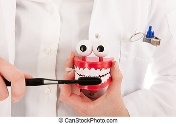 Dentist with brush and denture showing ho to do - Female...