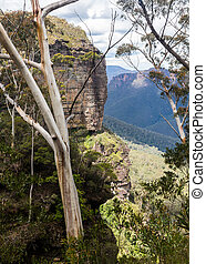 Grose Valley in Blue Mountains Australia - Grose Valley from...