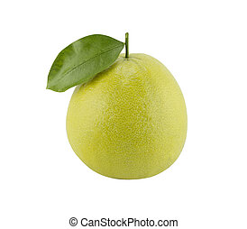 Bergamot oranges on white background (with clipping work...