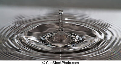 wave circles on water after droplet impact. grayscale.