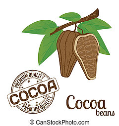 Cocoa beans and cocoa stamp
