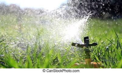 Water sprinkler. - Water sprinkler watering grass in park....