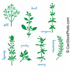 Aromatic Herbs - Set of various aromatic herbs Silhouettes...