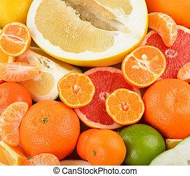 citrus - Various citrus