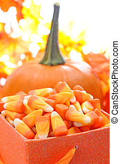 Halloween candy corn and pumpkin for holiday decoration