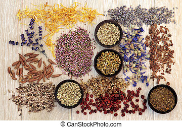 Alternative Medicine - Medicinal herb selection also used in...