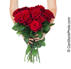 hands holding roses - two hands holding red roses isolated...