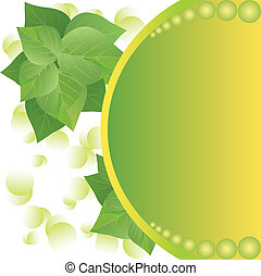 eco background with fresh green leaves and sun