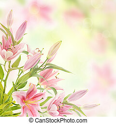 Pink lilies background - Pink lilies with copy space, floral...
