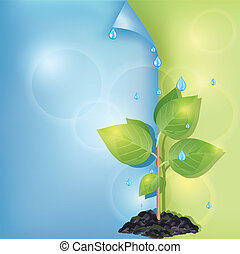 Eco background with plant and water drops