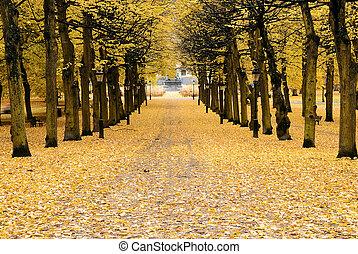 Autumn in Stockholm.