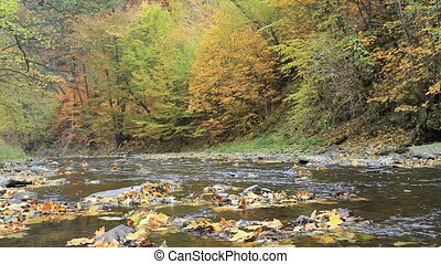 Little mountain river running through an autumn landscape...
