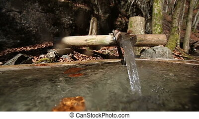 Stream of fresh alpine water running from a wooden spout to...
