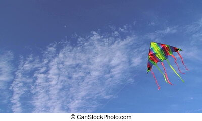 Kite in the wind