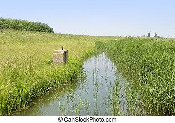 Dutch Polder - A typical Dutch Polder with a small, muddy,...