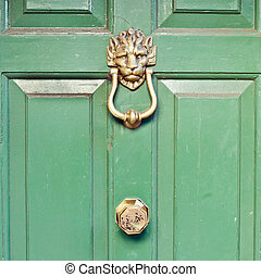 Door knocker - Brass lion head door knocker on a green front...