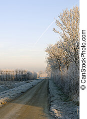 Winter landscape - Hoarfrost covered trees surrounding the...