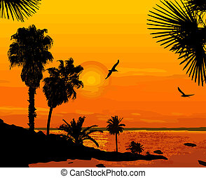 Sunset on beautiful seascape - Sunset on beautiful tropical...