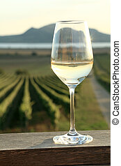 Glass of White Wine - Wine glass at sunset in Southern...