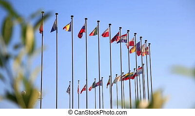 International flags - International flags on a background of...